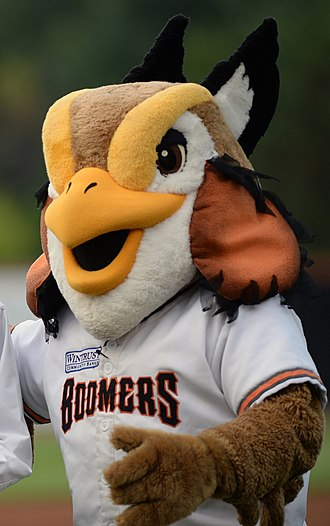 Schaumburg Boomers - Coop, the mascot of the Schaumburg Boomers