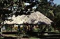Costa Rica Tortugero Jardin Hotel Ilan Ilan 081999 - panoramio.jpg