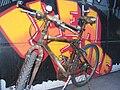Cow skin bicycle 1.jpg