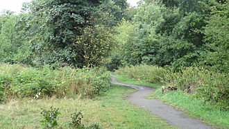 Crane Park - Path in Crane Park