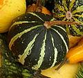 Cuisine of Belgium - IMG 3640 - gourd2.jpg