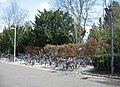 Cycle racks - behind the Faculty of Law - geograph.org.uk - 787286.jpg