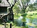 Daio wasabi farm02c.jpg