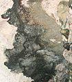 Dark blotch mid-way up cave wall on left side of Tabon Cave.JPG