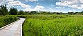 Deer Lake Park Panorama (5920410393).jpg
