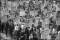 Demonstrators during the march on washington.tif