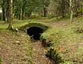 Devonport Leat tunnel entrance above Clearbrook.jpg