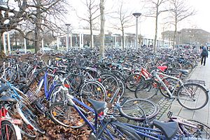 Bicycle parking - Hap-hazard bike parking gone wild. Without organized parking facilities, bike parking can easily become a problem in densely populated areas.