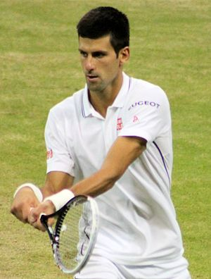 2014 ATP World Tour - Djokovic ended the year at number 1