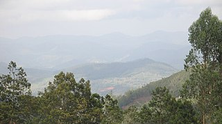 Nilgiri Biosphere Reserve International biosphere reserve of India