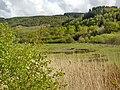 Dolgellau LL40, UK - panoramio (11).jpg