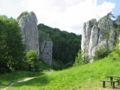 Dolina-bolechowicka-brama-1.jpg