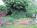 Dolní Žandov-hřbitov 06.jpg