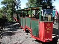 Driving Creek Railway Linx carriage at top terminus.jpg