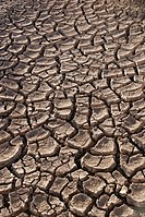 Drought/
