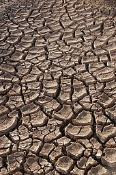 Tracking drought