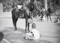 ETH-BIB-Ouagadougou, im Hofe des Moro Naba stehen buntgesattelte Pferde der Stammeshäuptlinge bereit-Tschadseeflug 1930-31-LBS MH02-08-0851.tif