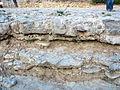 El Castellar dinosaur footprints site - Stratigraphic detail section - Teruel, Spain.JPG