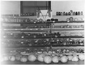 Elbowoods 4-H food display - NARA - 285322.tif