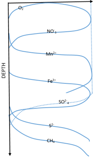 Remineralisation - Sketch of major electron acceptors in marine sediment porewater based on idealized relative depths