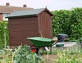 Elmgrove allotment shed.jpg