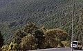 Entoto Mountains in Addis Ababa.jpg