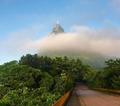 Estrada das Paineiras - Foresta da Tijuca -Rj-BR.png
