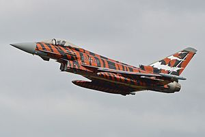 NATO Tiger Association - A German Eurofighter Typhoon of Taktisches Luftwaffengeschwader 74 at the 'Tiger Meet' in 2014