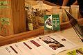 Evento de gastronomia realizado no shoping Leblon no Rio de Janeiro no dia 24 de abril de 2012.jpg