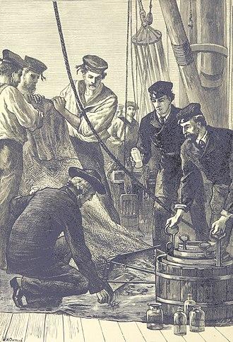Challenger expedition - Examination of caught specimen