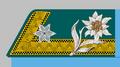 Fähnrich der k.k. Gebirgstruppe 1908-18.png