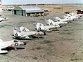F4D-1 Skyrays of VF-213 parked c1958.jpg