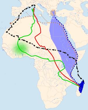 Eleonora's falcon - Image: Falco eleonorae migration routes