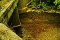 Falling-water-river-adams-acres-tn1.jpg