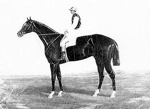 Falsetto (horse) - Falsetto 1876-1904- Enquirer x Farfaletta