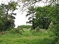 Farm track crossing dismantled railway trackbed - geograph.org.uk - 1319340.jpg