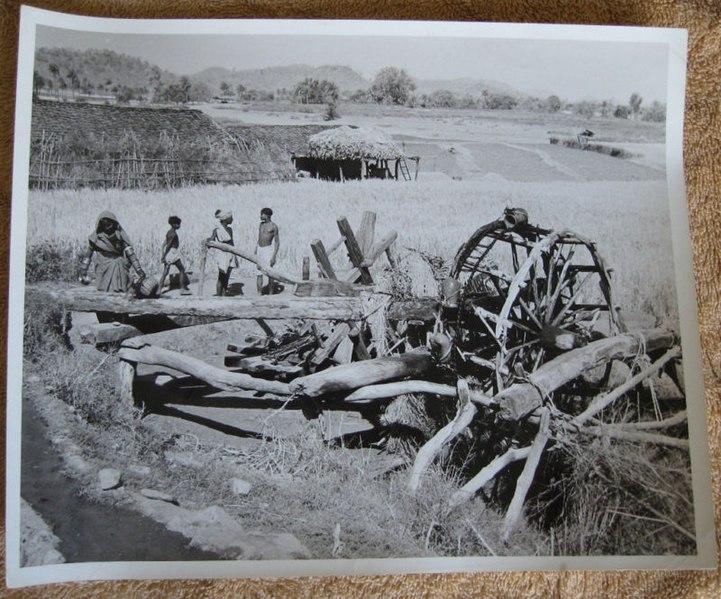 File:Farmers in southwestern Rajasthan in 1957.JPG