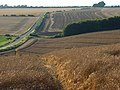 Farmland above Ashbury - geograph.org.uk - 918666.jpg