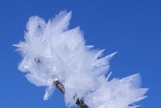 Feather ice 1, Alta plateau, Norway