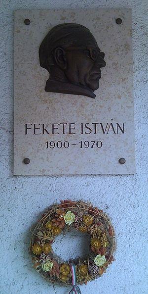 István Fekete cover