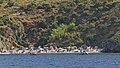 Ficarella Spiaggia - panoramio (1).jpg