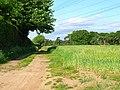 Field at Gromford, near Snape - geograph.org.uk - 184953.jpg