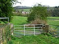 Field gates - geograph.org.uk - 779805.jpg