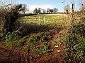 Field near Ham Barn (west) - geograph.org.uk - 1061922.jpg