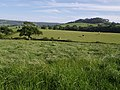 Fields near Abbott's Wootton - geograph.org.uk - 477349.jpg