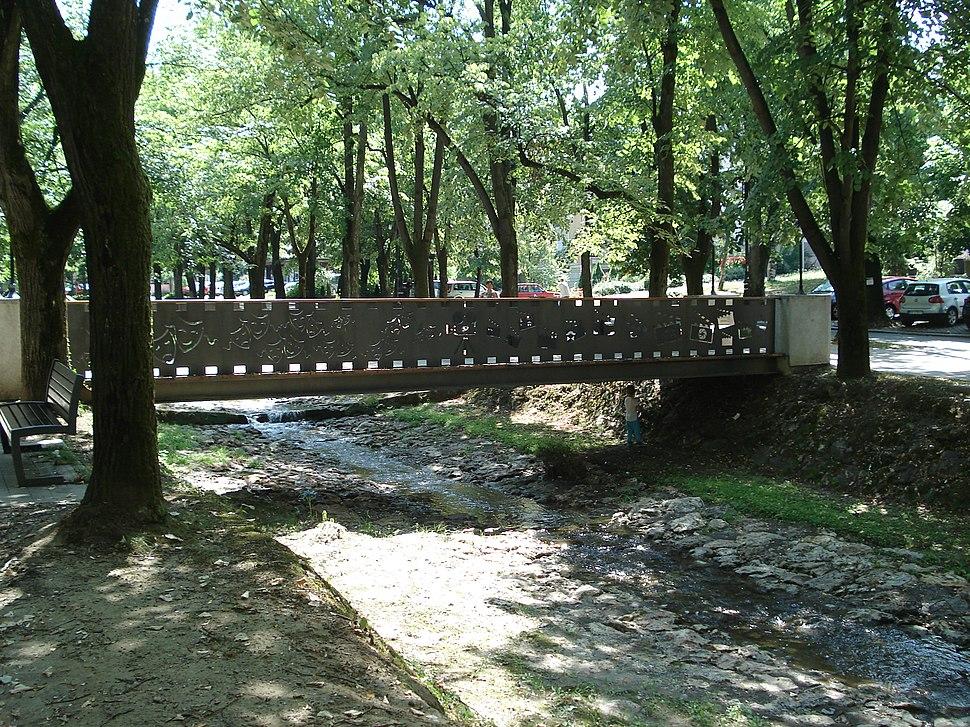 """Filmski most """"Ko to tamo peva"""" u Vrnjačkoj Banji 002"""