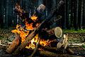 Fire! (hdr) (5790632499).jpg