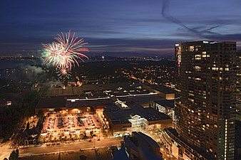 Fireworks in Bellevue.jpg