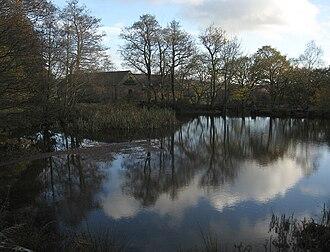Bentley Brook - Image: First walk, mill pond