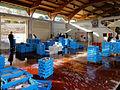Fish auction at l'Ametlla de Mar.jpg
